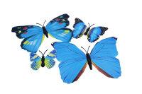 12er Set blau-bunte Dekoschmetterlinge mit Magnet
